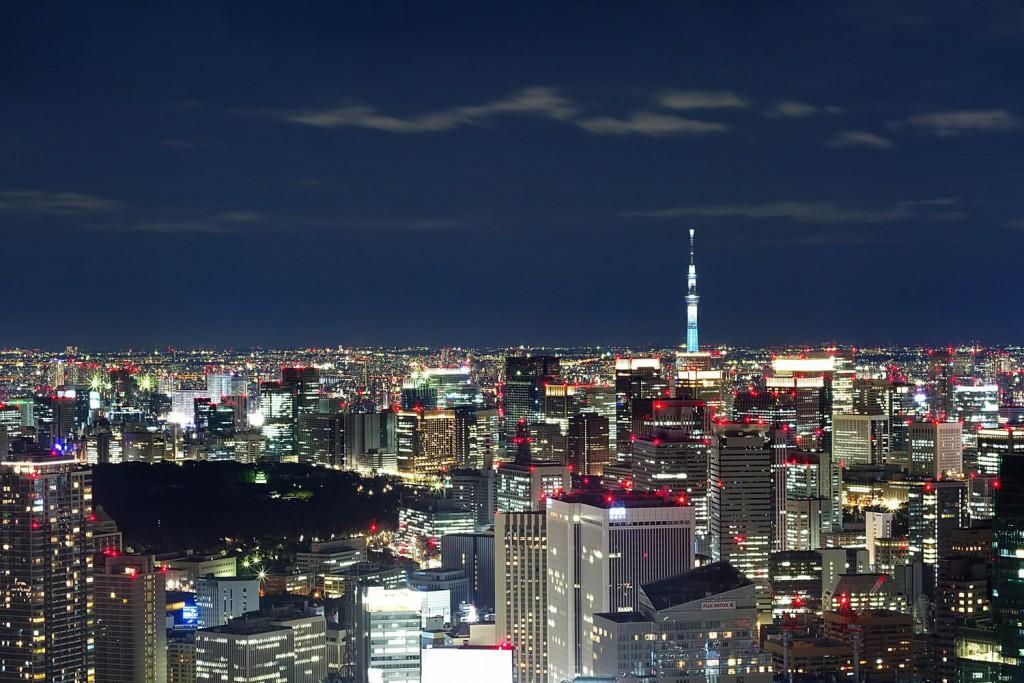 東京・六本木での胡蝶蘭