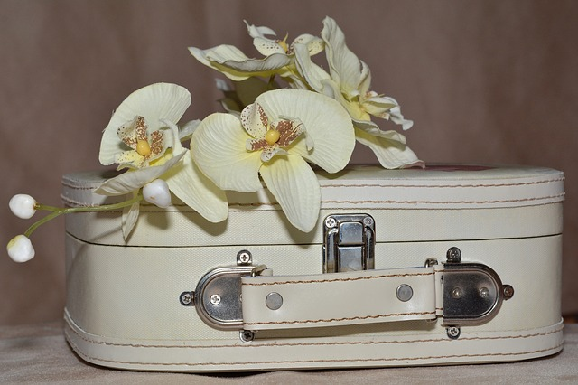 胡蝶蘭はお供えの花として贈っていいの?