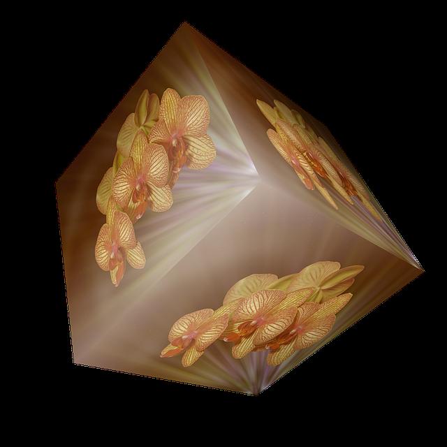 胡蝶蘭の花が咲かない時の原因と育て方