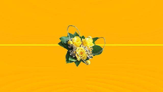 胡蝶蘭を贈答用で送りたい方の為のまとめ