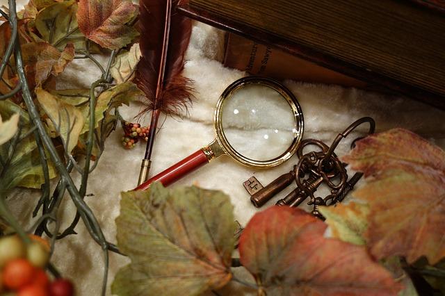 胡蝶蘭 葉に穴 原因と対策