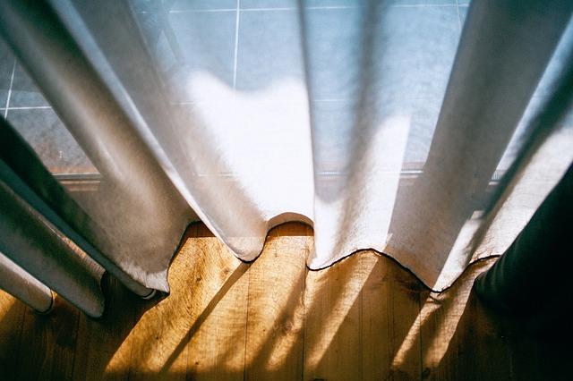 胡蝶蘭 日光 カーテン