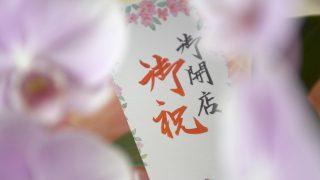 胡蝶蘭を贈るときの名札(立札)の書き方とマナー