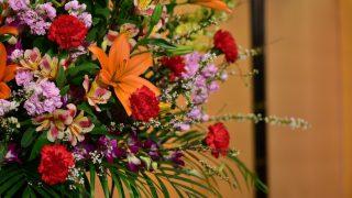 舞台花として胡蝶蘭を贈る!おすすめの理由とマナーについて