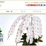 胡蝶蘭.comのお店の基本情報と特徴を紹介