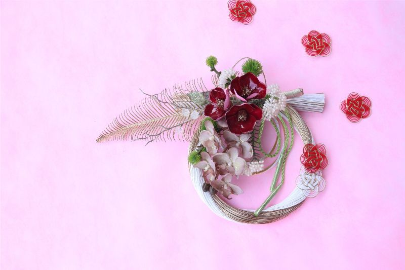 紅白 胡蝶蘭