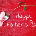 父の日のギフトに胡蝶蘭を贈ろう!選び方や注意点などまとめ