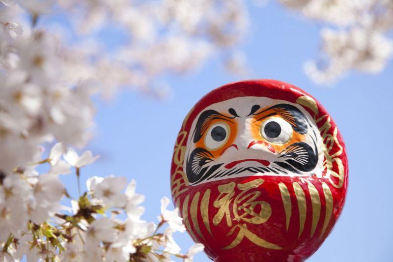 だるま 桜