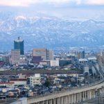 富山で胡蝶蘭を購入するなら?おすすめショップ・通販サイトをご紹介
