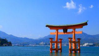 広島で胡蝶蘭を購入するなら?おすすめ花屋・通販サイトをご紹介