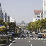 姫路で胡蝶蘭を買うならココ!おすすめの人気花屋5選!