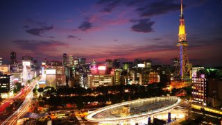 名古屋で胡蝶蘭を贈る方法って?おすすめ配達可能ショップ5選をご紹介!