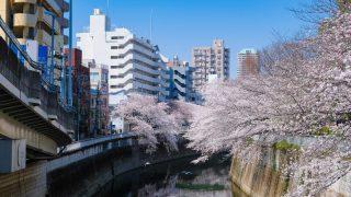 文京区で胡蝶蘭を購入するには?人気お花屋さん5選をご紹介